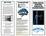 Immune-Boosting Nutritional Strategies For Collegiate Athlete: How-To Pamphlet by Lyndie Kelley