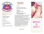 Breast Is Best! by UNE Applied Nutrition Program