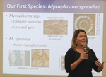 A Tale Of Two Species: Evolvability, Genomic Context, And Pathogen Forecasting by Meghan May