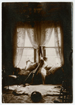 Josephine Peary reclining by window