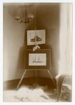Photographs in the Peary home