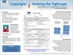 Copyright: Walking The Tightrope