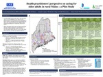 Health Practitioners' Perspective On Caring For Older Adults In Rural Maine – A Pilot Study