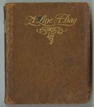 1917-1921 diary