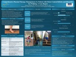 Comprehensive Physical Therapy Management Of A Patient With Motor Control Deficits And Idiopathic Toe-Walking: A Case Report by Chelsey Hoglund and Kirsten Buchanan