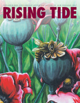 Rising Tide 2017 by UNE Office of Research and Scholarship, Ed Bilsky, Dani Deason, Philip Shelley, Jennie E. Aranovitch, Josh Pahigian, Laura M. Duffy, and Marine Miller