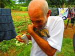Pet Coati by Steven Eric Byrd