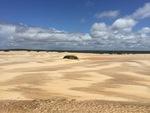 Dunes by Steven Eric Byrd