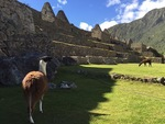 Machu Picchu III by Steven Eric Byrd