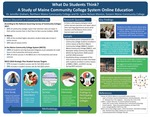 What Do Students Think? A Study of Maine Community College System Online Education