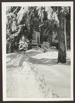 Goddard Hall Entrance, Westbrook Junior College, Winter 1956 by Jackson White