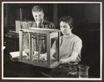 Chemistry Laboratory, Alumni Hall, Westbrook Junior College, late 1950s