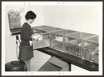 Laboratory, Blewett Science Center, Westbrook Junior College, 1969